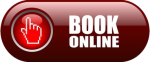 Icon-Book-online